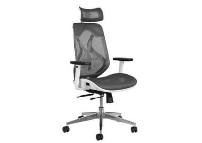 MISURAA Imported Xenon High Back Ergonomic Chair with Advanced Synchro-Tilt Mechanism for Office & Home